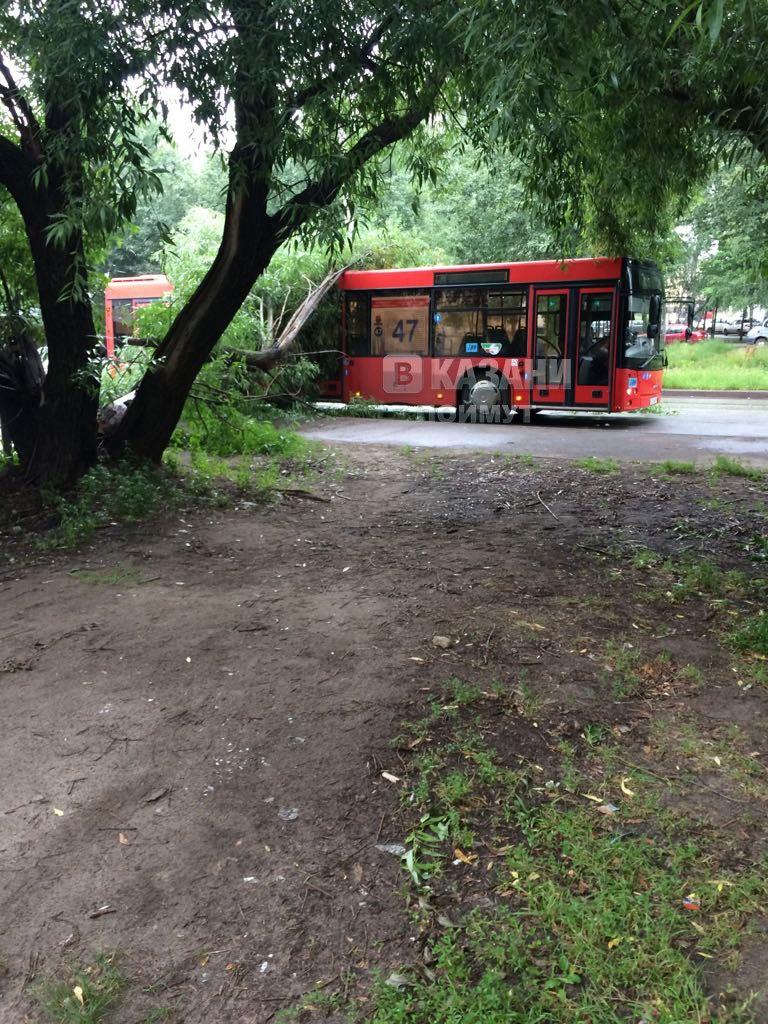 Опубликовано фото ДТП в Казани, в котором дерево упало на пассажирский автобус