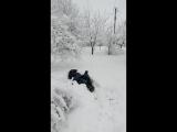 Когда наконец-то выпало много снега!!!