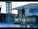 Дельфинарий в Архипо Осиповке