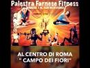 GYM Palestra Farnese Fitness