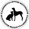 Пикет в Калининграде! Против живодеров