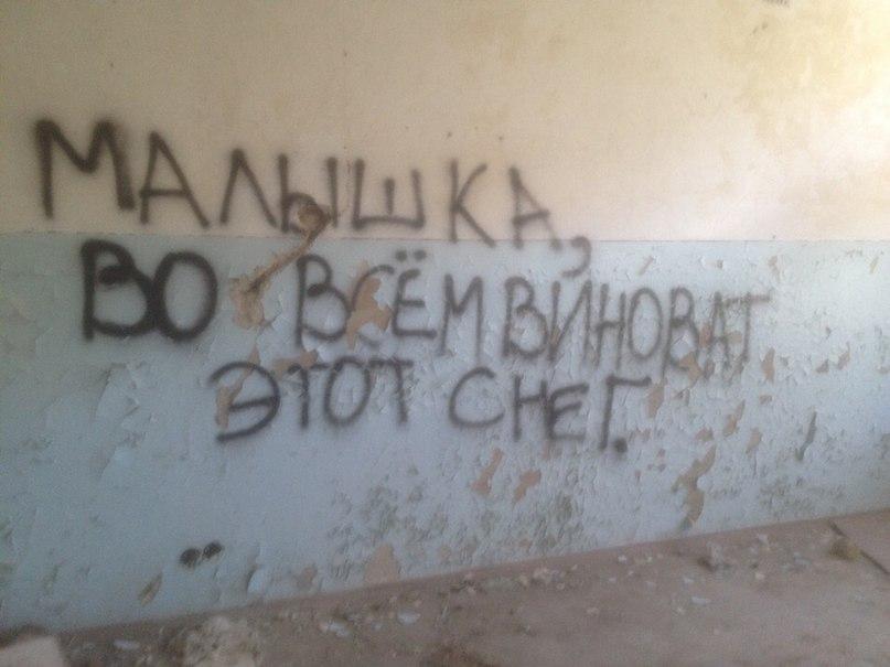 Александра Шишкина | Барнаул