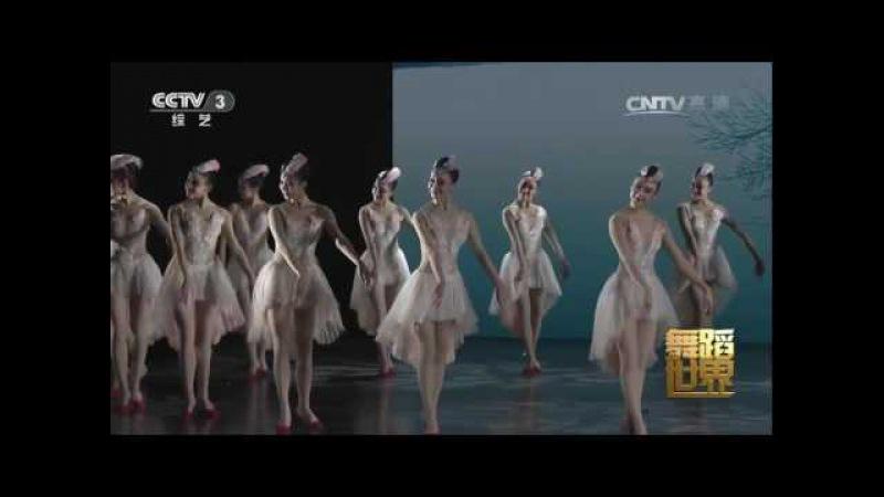 Beautiful Chinese Dance【5】《朱鹮》Crested ibis- 720p