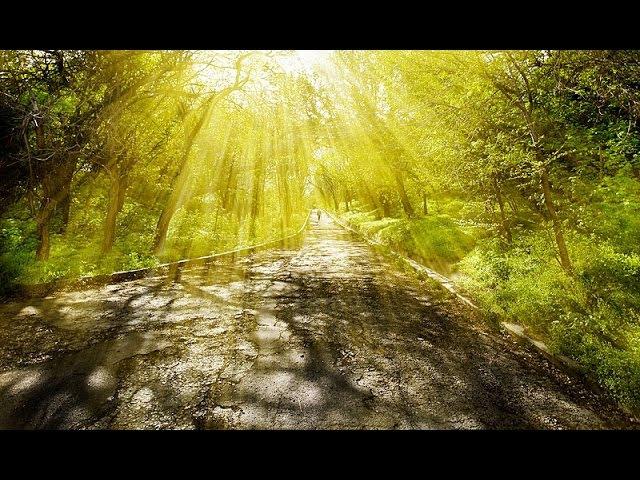 Ловушки на Светлом Пути Духовного Роста