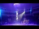 В минском цирке воздушная гимнастка разбилась после падения с высоты