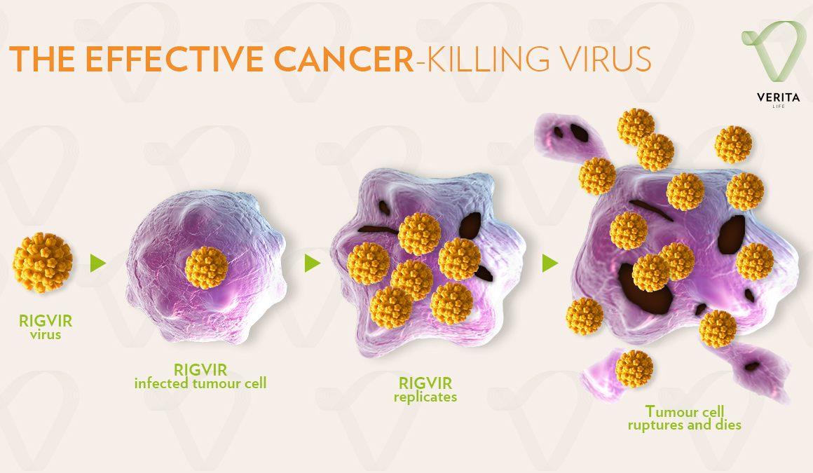 Лечение онкологии вирусами
