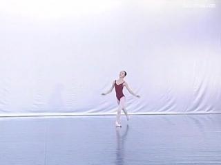 Beijing Academy of Dance (Vol 9) Пекинская академия танца (Том 9)