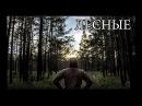 БЕЗ СНАРЯЖЕНИЯ В ЛЕСУ | простое и сложное выживание