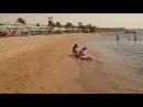 Пляж Ghazala Garden и его рыбы