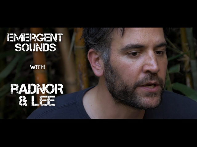 Radnor Lee Be Like The Being Emergent Sounds Unplugged