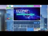 Обзор проекта Eco pay biz