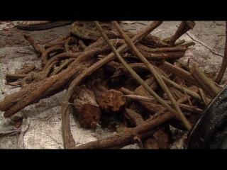 Фильм о ДМТ: молекула Духа (хорошее качество и озвучка)