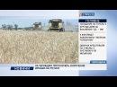 На Черкащині прогнозують скорочення врожаю на третину