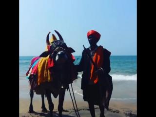 Anju beach Goa