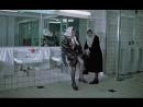 image.mp4 Девушки, которые носят зимой кожаные куртки, мини - юбки и капроновые колготки, вы..., незамерзайку что ли пьёте???!!!