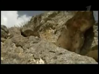 Искатели (Андрей И) - Золотой колодец