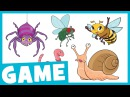 Learn Bugs for Kids | What Is It? Game for Kids | Maple Leaf Learning