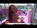 Утро России - Елена Ландер в бикини на России 1, 10.10.16 (1080i)