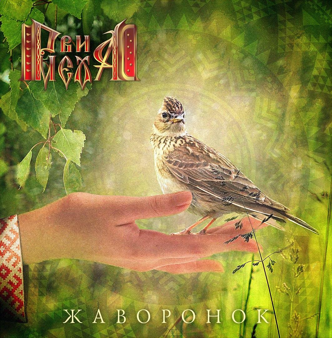 Дебютный альбом группы РВИ МЕХА! - Жаворонок (2017)