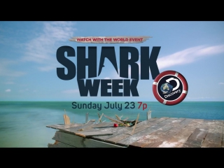 Музыка из рекламы Discovery - Shark Week (Seal) (2017)