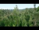 Красивое видео природы с музыкой Релакс