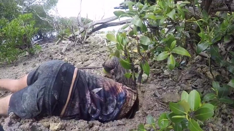 Beau Greaves - Another solid muddy up in the holes using my decoy...