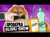 Делаем газировку | ПРОВЕРКА ЛАЙФХАКОВ с канала SLIVKI SHOW, ANNY MAY, MAMIX