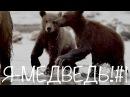 Что за шубки у зверят Я медведь 1 Природа для самых маленьких
