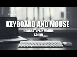 SOUNDS Keyboard and Mouse (ЗВУКИ КЛАВИАТУРЫ И МЫШИ)