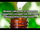 Живая таблетка от болезни сердечно-сосудистой системы, туберкулеза, гипертонии