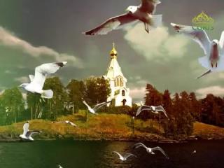 Беседы с батюшкой. Участие православных в управлении государством. Эфир от 19 января
