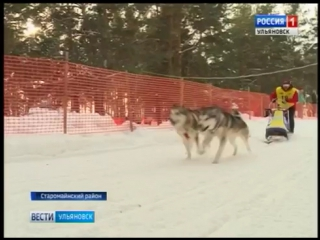 Вести Ульяновск