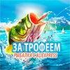 За трофеем   Рыбалка с AliExpress