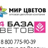Цветы Оптом Нижний Новгород #МирЦветов