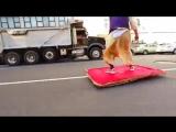 Аладдин прокатился по Нью-Йорку на ковре-самолете