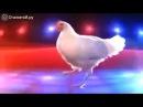 Куриный Рэп и танец
