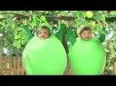 Реклама Фруктовый сад - Дети-яблоки на дереве