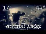 Animal ДжаZ и Zero People 1718.02 в Петрозаводске