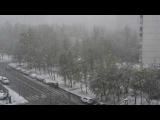 2017.06.08 Москва. Майский снег на Юго-Западе. День