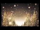 Christer Sjögren - Natten tänder ljus på himlen