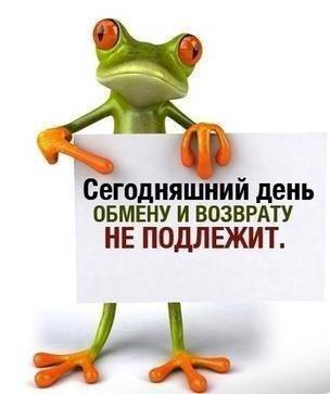 https://cs7054.vk.me/c638930/v638930216/1149d/FgYJ3FBoNu4.jpg