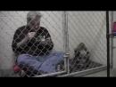 Ветеринар в клетке