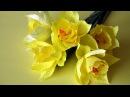 Kwiaty z bibuły żonkile Paper flowers daffodils DIY