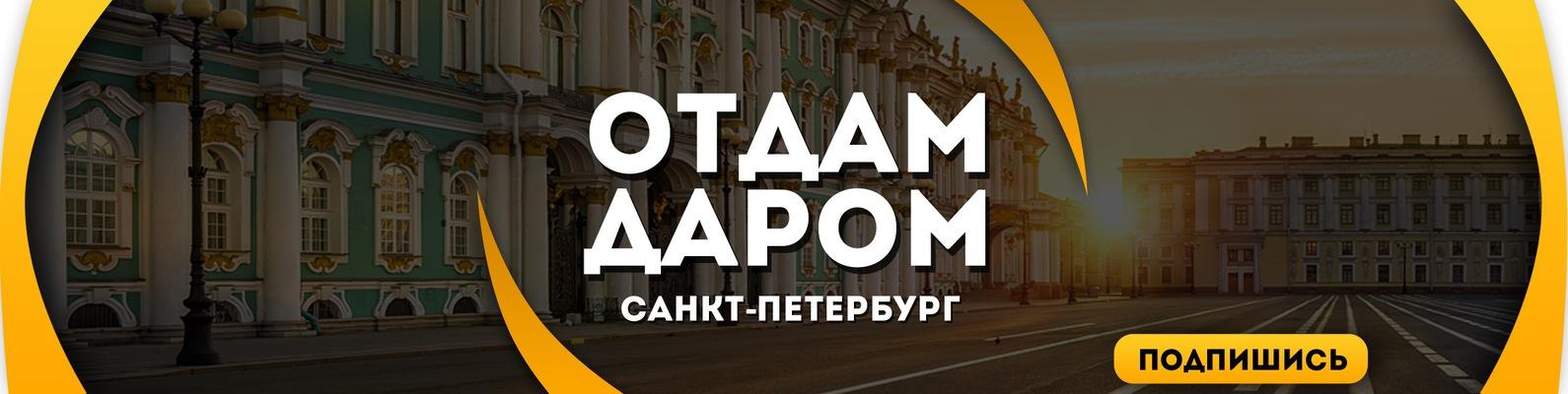 Таролог из Битвы экстрасенсов Александр Кинжинов