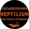 Стена объявлений Рептилиум