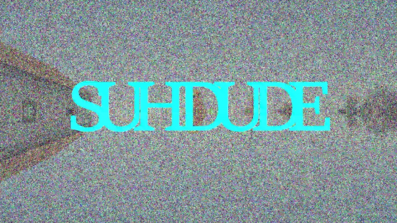 SUHDUDE (DS) broh