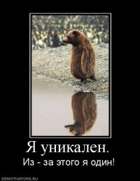 Катя Самохина, 27 января 1998, Львов, id83976438