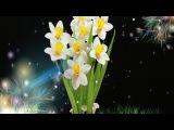 23.3: Làm hoa thủy tiên bàng giấy nhún - Narcissus paper flower tutorial
