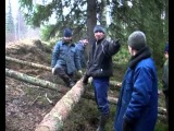 финская песня, лесорубы, водлозеро