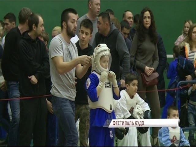 Сильнейшие кудоисты страны боролись в Ярославле за призы клуба «Золотой медведь»